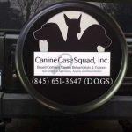 Promoting dog training services